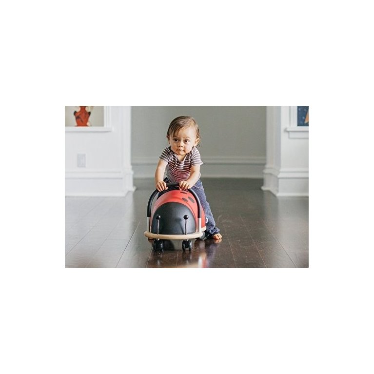 Correpasillos mariquita de Wheely Bug